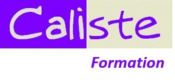 logo caliste formation management risques